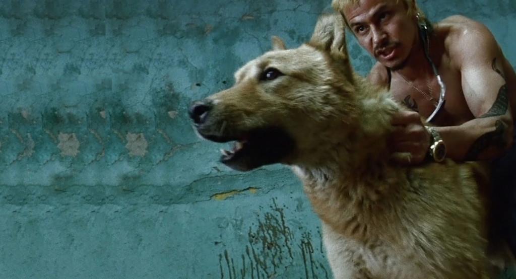 """Amores Perros [Blu-ray] """"il collezionista"""""""