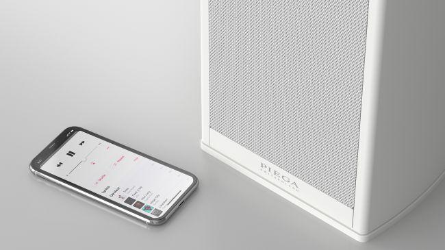 Diffusori Piega Premium Wireless 301 – La recensione