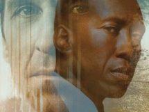 Serie in Noir – Harry Quebert & True Detective 3
